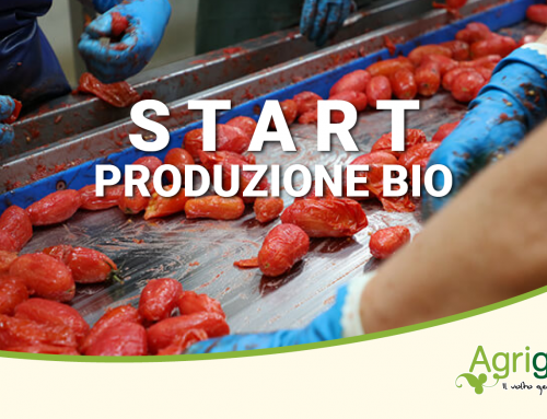 Production started Bio 2021